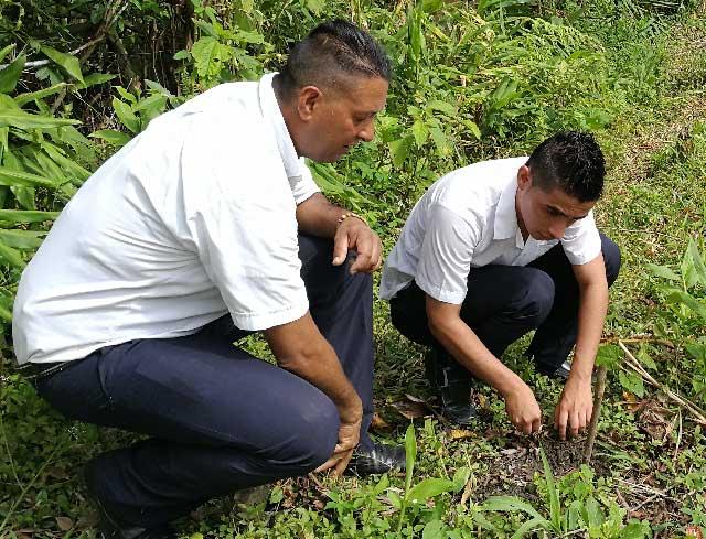 Estudiantes de Pauna le hacen frente a la deforestación