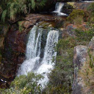 El Parque Natural Regional Paramo el Rabanal