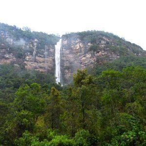 Reserva Forestal Protectora Sierra el Peligro