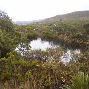 El Parque Natural Regional Siscunsi Oceta