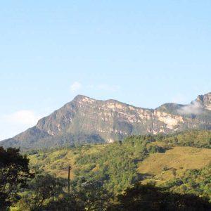 La Reserva Forestal Protectora la Cuchilla de Sucuncuca