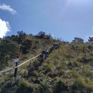 Plan de Ordenamiento Ecoturístico del Parque Municipal La Zarza 01