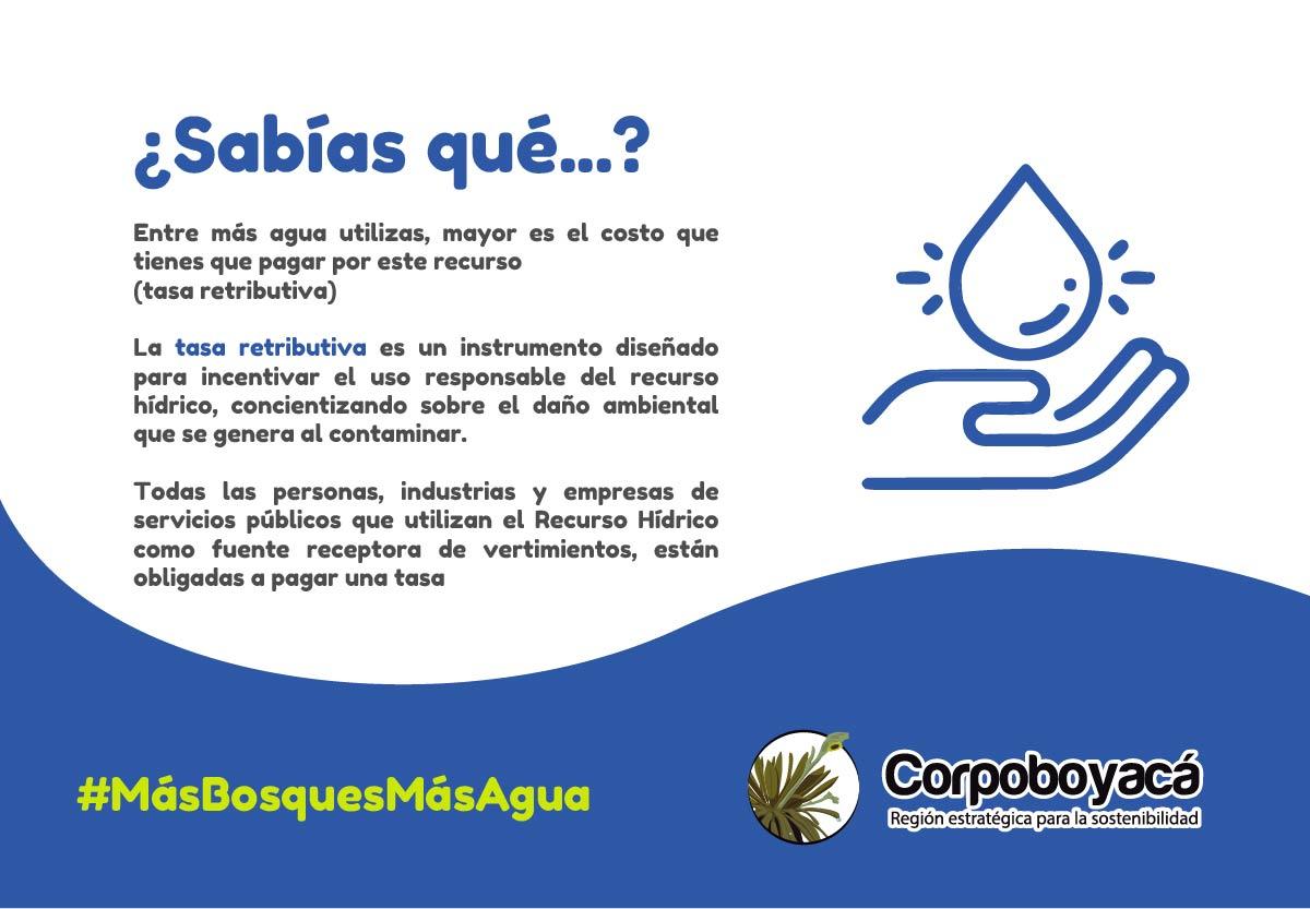 22 de marzo Día Mundial del Agua #MásBosquesMásAgua 3