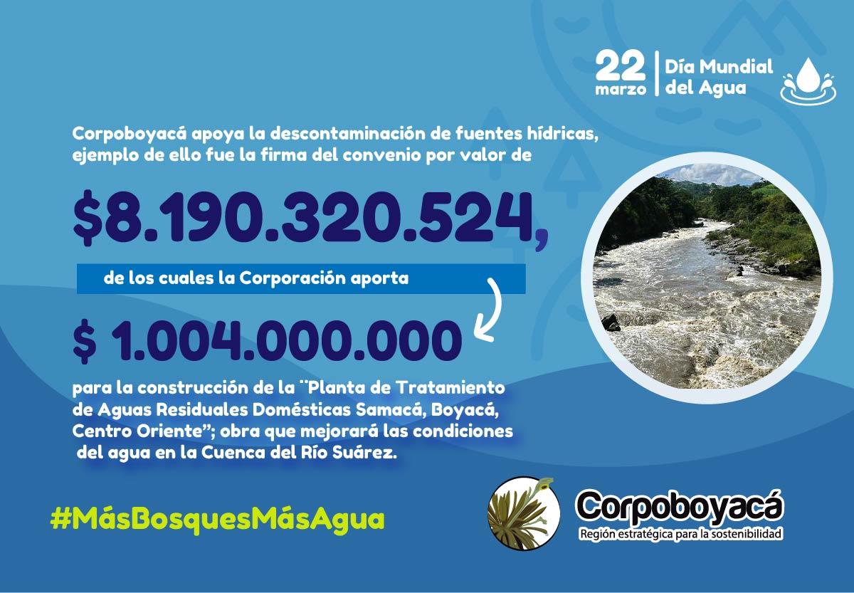22 de marzo Día Mundial del Agua #MásBosquesMásAgua 7
