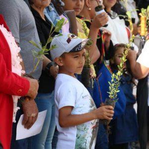En esta Semana Santa Corpoboyacá entregará 15000 árboles 6