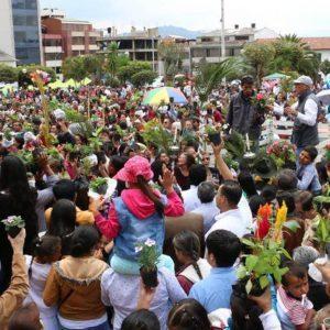 En esta Semana Santa Corpoboyacá entregará 15000 árboles 4