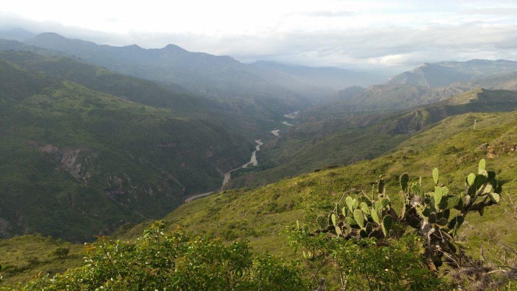 Foto Bosques secos del Chicamocha: la importancia de preservar este ecosistema con el apoyo de la comunidad