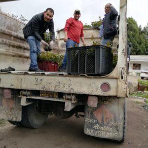 Entrega de material vegetal a usuarios vereda El Bosque municipio de Belén