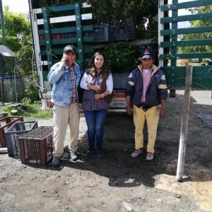 Entrega de material vegetal a secretaria de agricultura municipio de Paipa