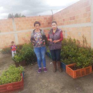 Entrega de material vegetal a usuario municipio de Paipa