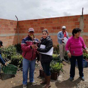 Entrega de material vegetal a usuarios municipio de Paipa