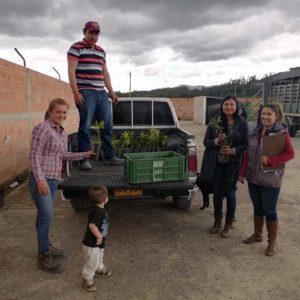 Entrega material vegetal a Secretaria de Desarrollo Agropecuario municipio de Tibasosa
