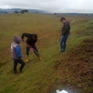 Entrega material vegetal vereda Tras del Alto municipio de Tunja