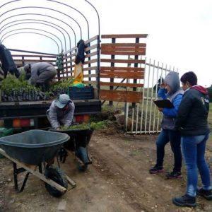Entrega material vegetal a usuarios municipio de Tunja