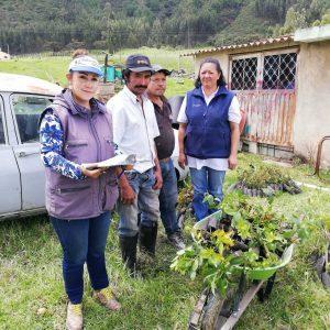 Entrega de material vegetal vda cuche municipio de santa rosa de Viterbo