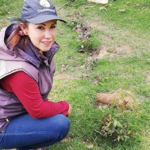 visita de seguimiento de siembra de material vegetativo vda pastoreros municipio de Paipa