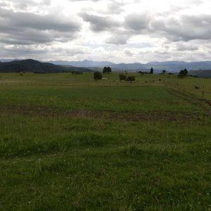 visita predio vereda pastoreros municipio de Paipa