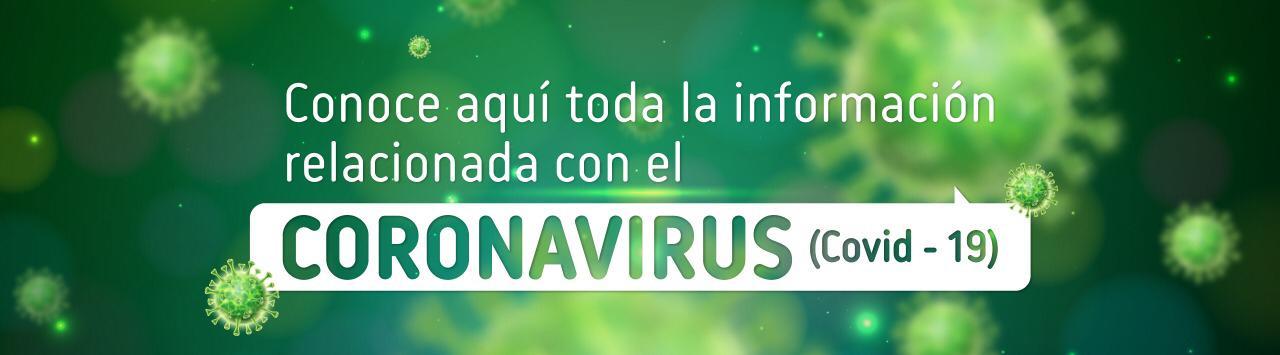 Foto Conocer más información del Coronavirus