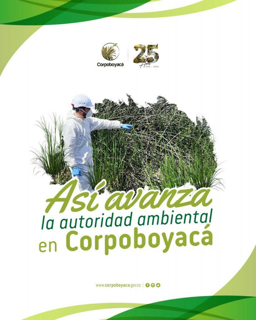 Foto Corpoboyacá ha realizado 165 operativos durante 2020 para protección de los territorios en la jurisdicción