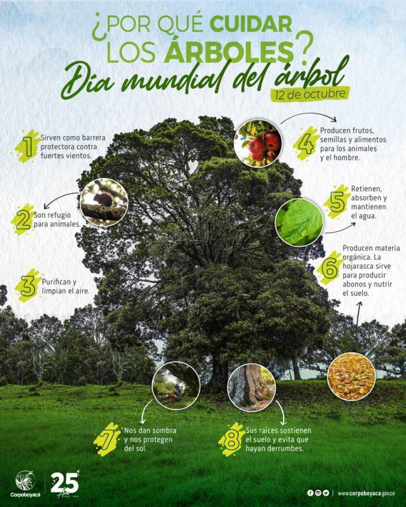 Foto Corpoboyacá sembrará 13 mil plantas en el «Día Mundial del Árbol»