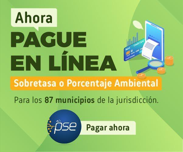 Imagen Pago PSE