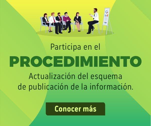 Imagen Participe procedimiento Actualización Esquema de Publicación