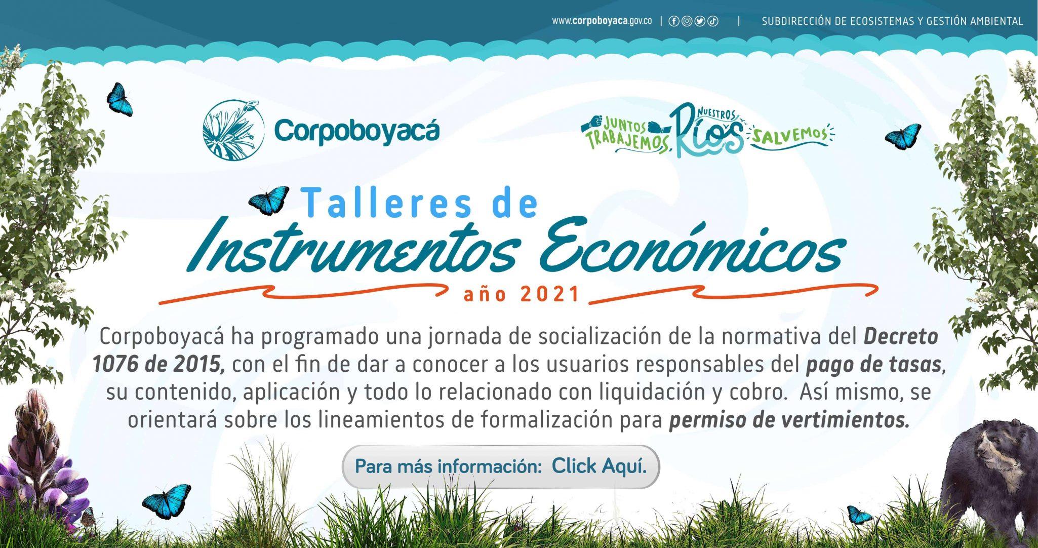 Foto Talleres de Instrumentos Económicos año 2021